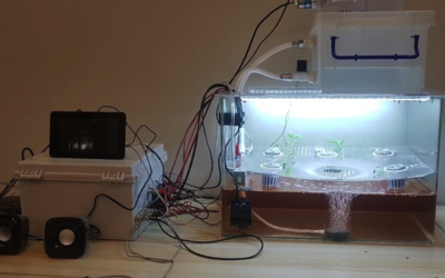 Green Box is a Fully Automated Hydroponics System for the Home #piday #raspberrypi @Raspberry_Pi